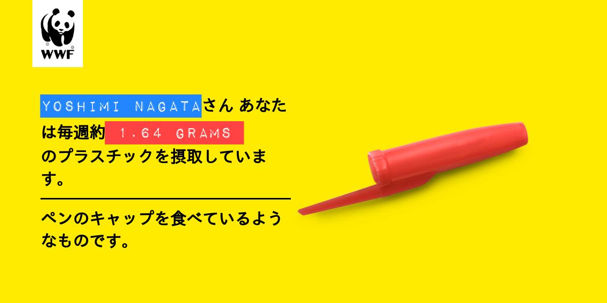 Plastic diet result for yoshimi nagata