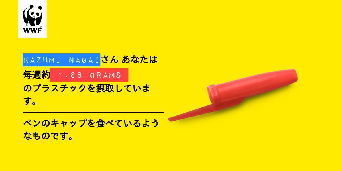 Plastic diet result for Kazumi Nagai