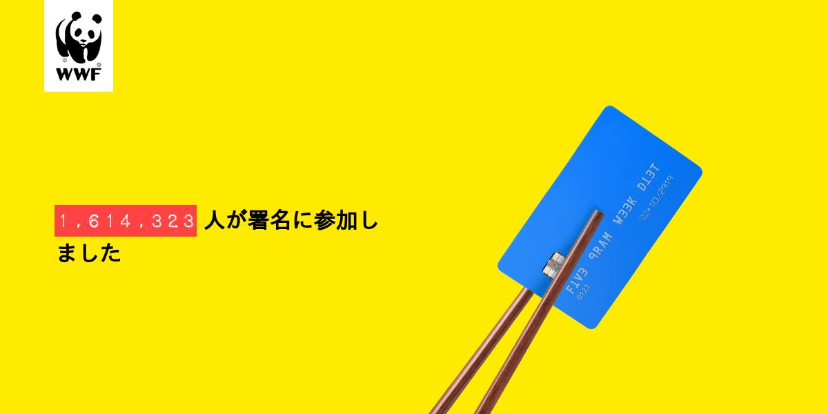 Plastic diet result for Kozue Fukuzawa