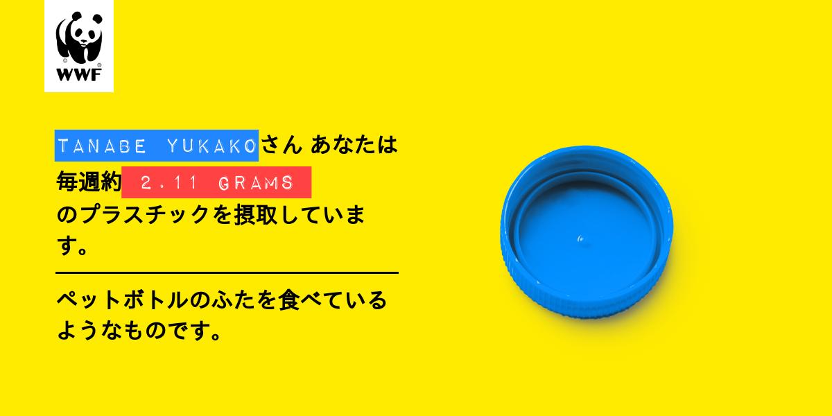 Plastic diet result for tanabe yukako