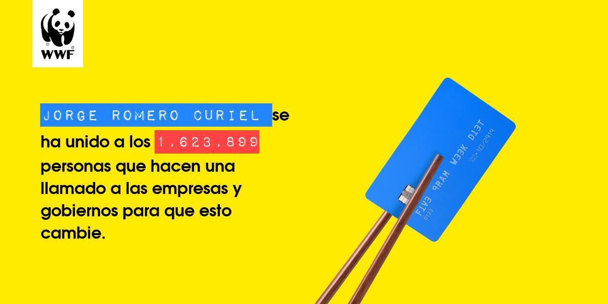Plastic diet result for Jorge Romero Curiel